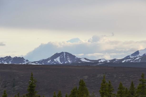 DNP - Mt McKinley