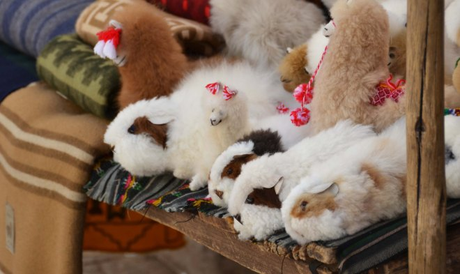 Stuffed Guinea Pigs